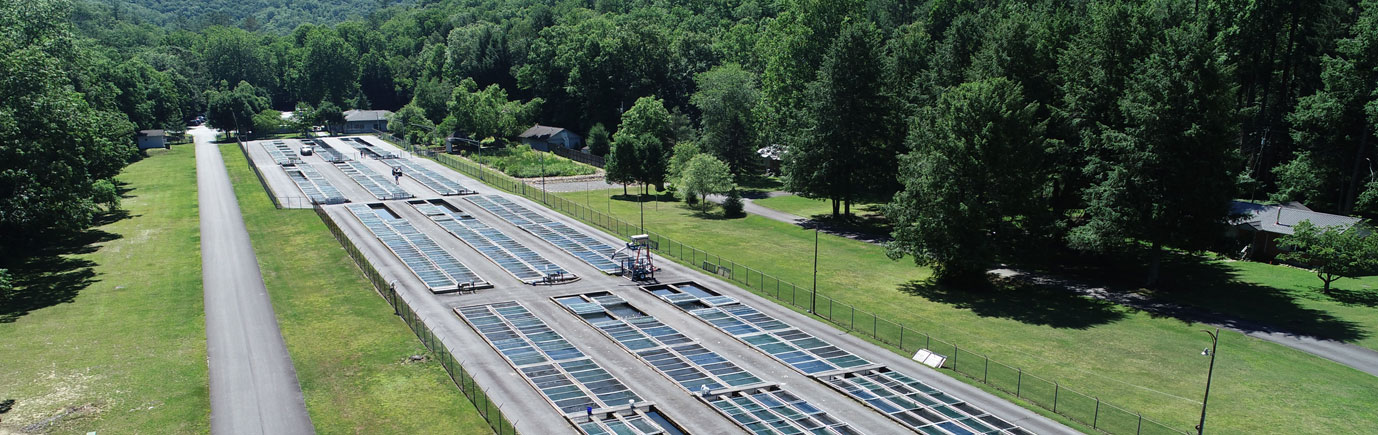 Setzer Fish Hatchery Project Aerial
