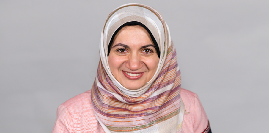 Lamyaa Negm, PhD, Co-Authors Journal of Hydrology Article
