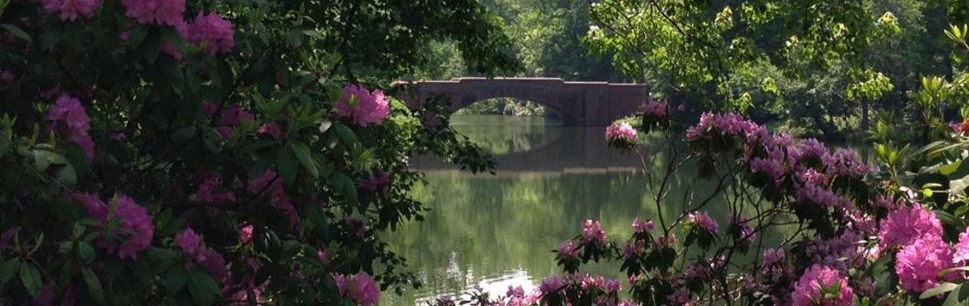 Biltmore Pond in Asheville NC