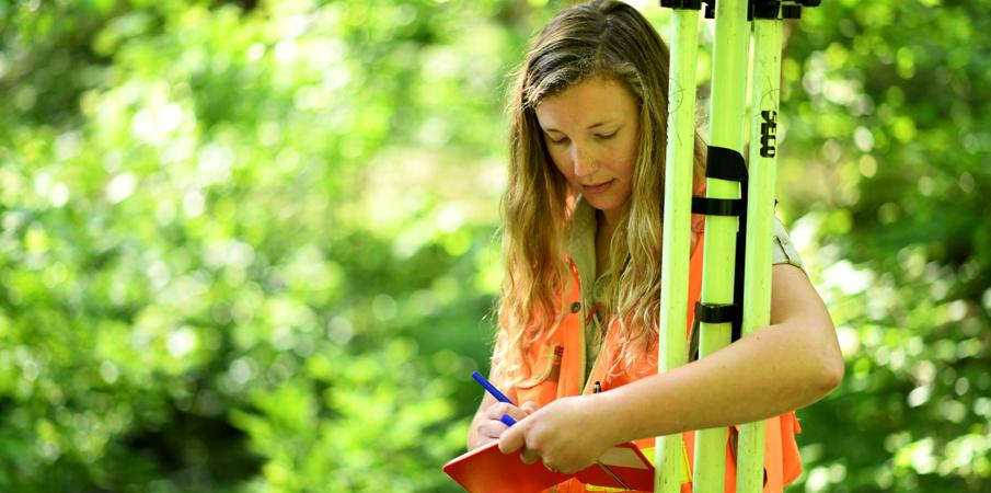 Lisa Simmons Surveyor