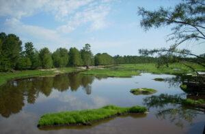 Rhodes Pond Dam Repair