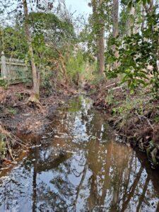Stream free of debris